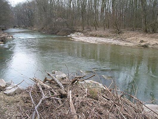 Die Url ca. 1 km vor ihrer Mündung in die Ybbs.